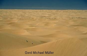 Namib-Desert: Menschen klein wie die Fliegen. Tourist attraction: The world oldest desert in Namibia