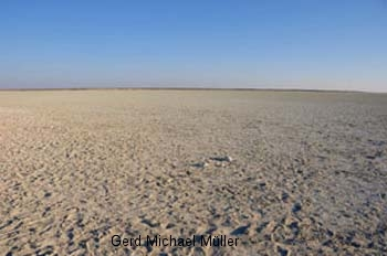 Sand, Salzkruste, Savanne: DIe Etosha Salzpfanne. Sand salt and savannah - the etosha salt pans in Namibia