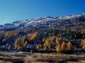 Bernina-Pass: Herbstwanderung