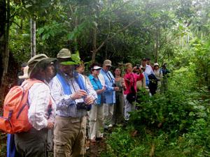 Eine Personengruppe der MS Bremen beim Dschungelausflug mit Amazonas-Wissenschaftlern und Umweltschützer