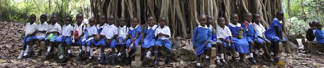 Kenyanische Schulkinderunter einem grossen Baum im Haller Park: Die ehemaligen Kalk-Steinbrüche wurden von einem Schweizer renaturiert und in einen Tierpark umgewandelt. Kenyan school-children under a huge tree in Haller Park in Mombasa, where a swiss ren