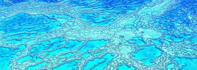 Headerbild Korallenriff «Hardy-Reef» im Great Barrier Reef in Queensland, Australien. © GMC Photopress, Gerd Müller, gmc1@gmx.ch