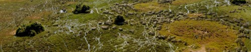 Headerbild Okavango Swamps Airshot