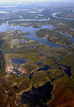 BOT_OkavangoSwampsAirshot6h