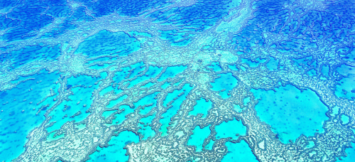 Headerbild Airial shot of a Coral-Reef in the Whitsunday Islands, Great Barrier Reef, Queensland, Australia. © GMC Photopress, Gerd Müller, gmc1@gmx.ch