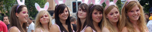 Headerbild Streetparade-Bunnies