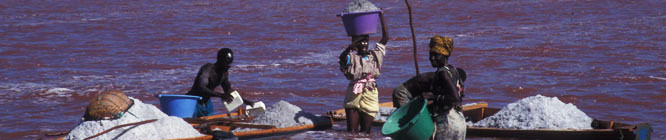 Headerbild Salzsalinen im Lac Terba, dem rosaroten See im Senegal. Salt salinas in Lac Retba, the pink lake in Senegal.