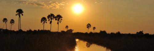 1260px Header Sunset Okavango-Delta