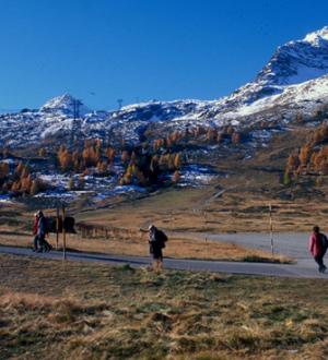 Beliebt: Herbst-Wanderungen in den Schweizer Alpen beim Bernina-Pass. Trekking in the swiss mountains at the Bernina-Pass