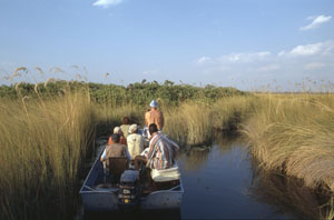 Schiffreise Botswana: Touristen-Bootsausflug und Expedition in die Sumpflandschaft des Okavango Deltas inmitten der Kalahari-Wüste, Boattrip through the Okavango Delta swamps in the Kalahari desert,