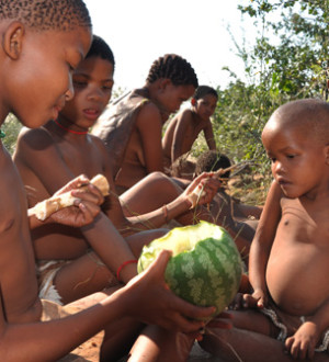Botswana: Naro-San-People near Ghanzi in the central Kalahari eating a melon. Naro-Buschmann-Sippe nahe Ghanzi in der Zentral-Kalahari von Botswana essen eine Melone