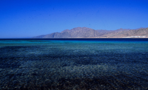 Sinai: Dahab, Diver-Eldorado in Sinai. Dahab, das Taucherparadies im Sinai bei Dahab